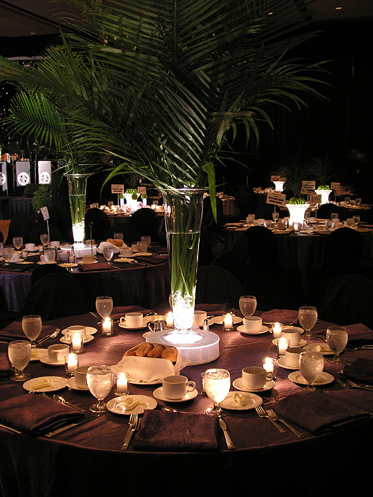 Buy Tower Vases and lighting at Vibride Wedding Mall